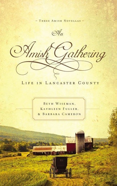 An Amish Gathering